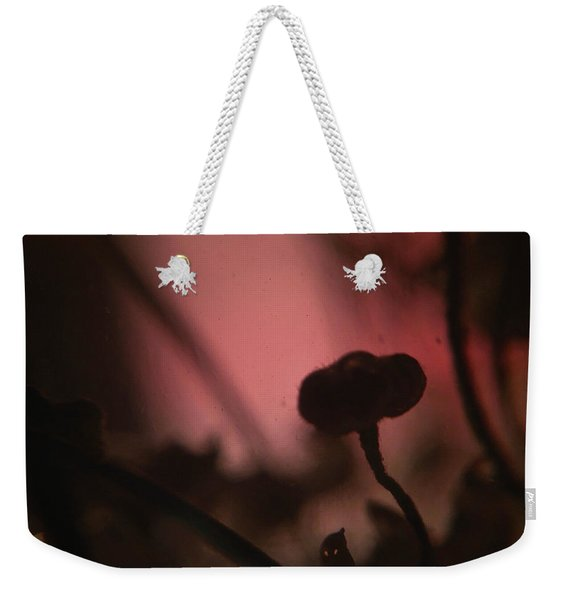 Aspiration With Ghost Weekender Tote Bag