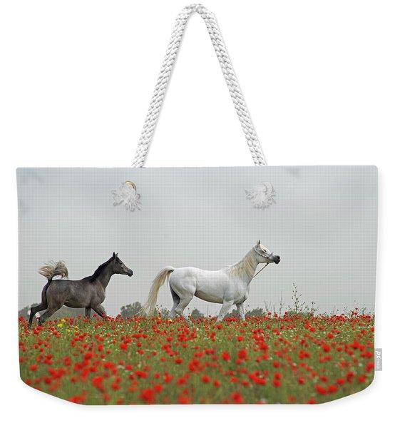 At The Poppies' Field... Weekender Tote Bag