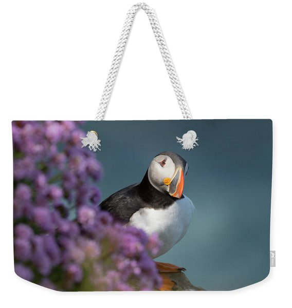 Atlantic Puffin - Scottish Highlands Weekender Tote Bag