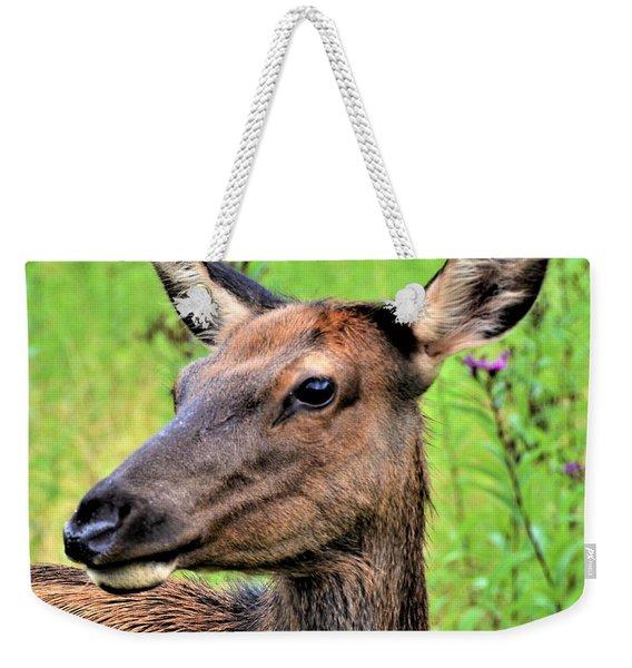 Attentive Yearling Weekender Tote Bag