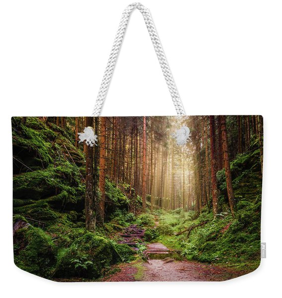 Weekender Tote Bag featuring the photograph Attractive Pathway In Saxon Switzerland by Dmytro Korol