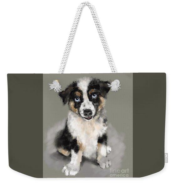 Weekender Tote Bag featuring the painting Australian Shepherd Pup by Lora Serra