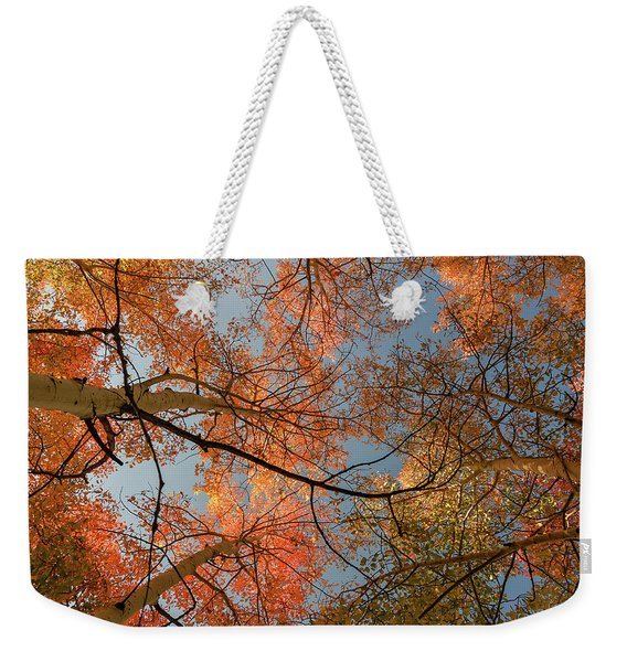 Autumn Aspens In The Sky Weekender Tote Bag