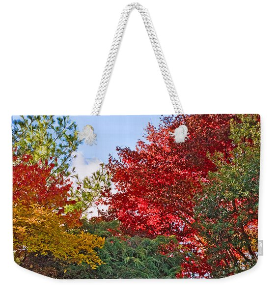 Autumn At F D R Weekender Tote Bag