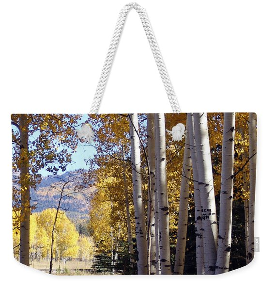 Autumn Chama New Mexico Weekender Tote Bag