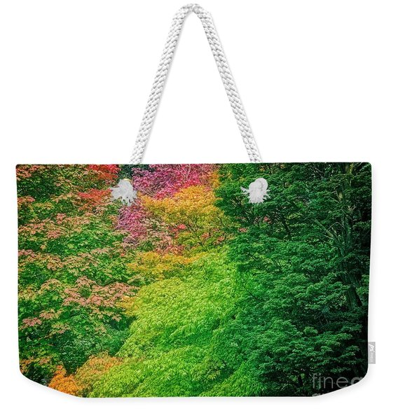 Autumn Colors On Acer Tree Leafs Weekender Tote Bag