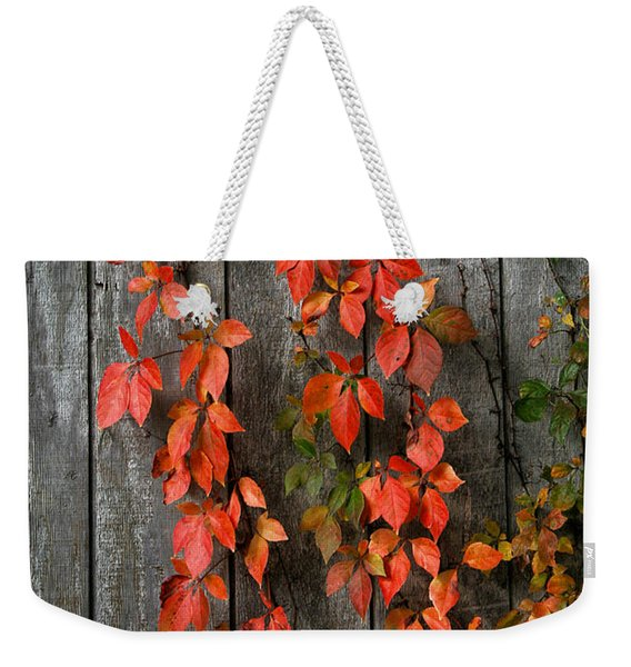 Weekender Tote Bag featuring the photograph Autumn Creepers by William Selander