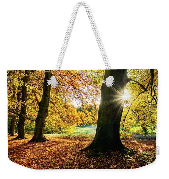 Autumn Evening In Saxony Weekender Tote Bag