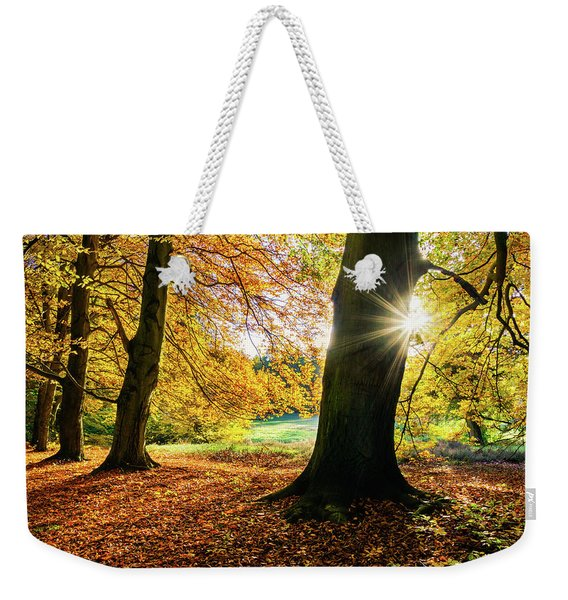 Weekender Tote Bag featuring the photograph Autumn Evening In Saxony by Dmytro Korol