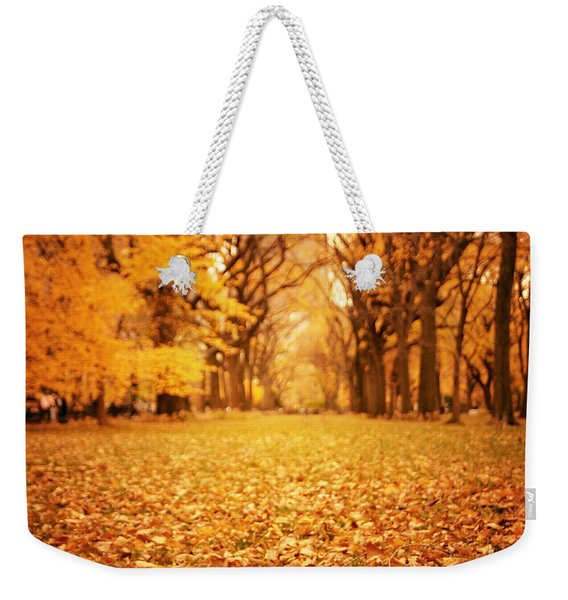 Autumn Foliage - Central Park - New York City Weekender Tote Bag