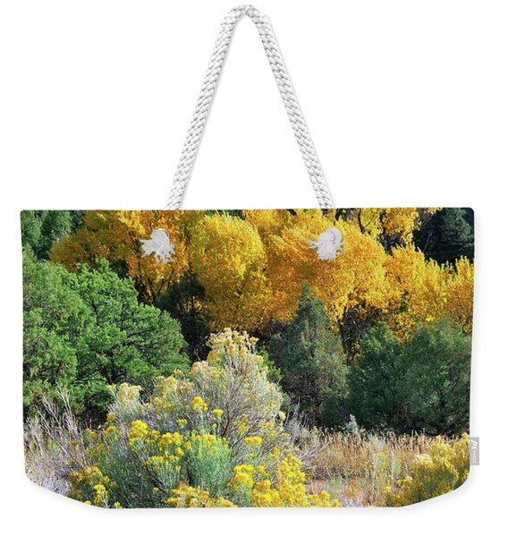 Weekender Tote Bag featuring the photograph Autumn In The Canyon by Ron Cline
