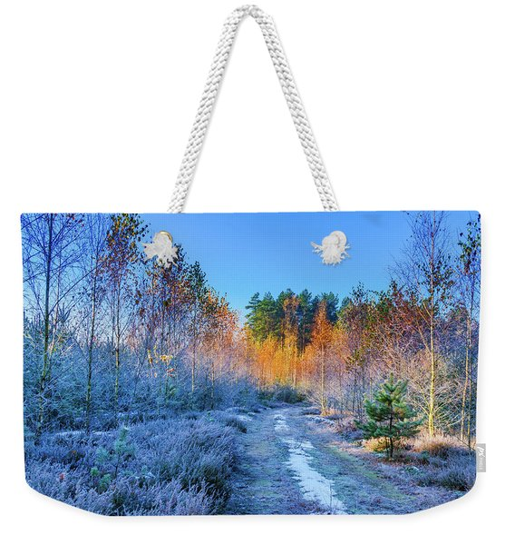 Weekender Tote Bag featuring the photograph Autumn Meets Winter by Dmytro Korol