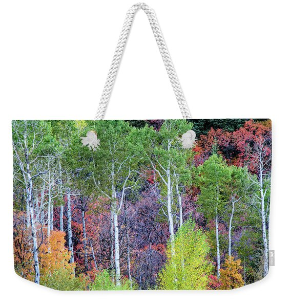 Autumn Mix Weekender Tote Bag