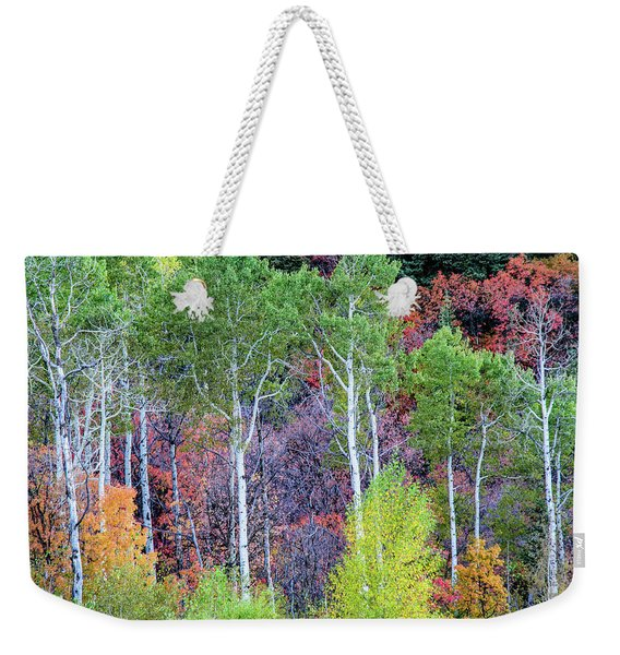 Autumn Mix Weekender Tote Bag