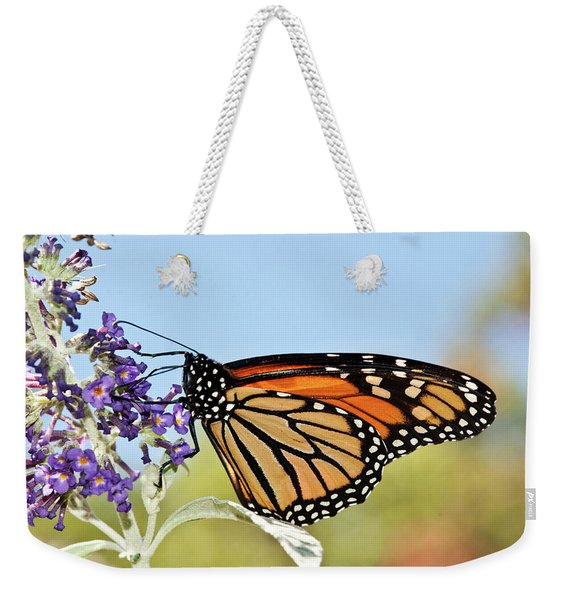 Autumn Monarch Butterfly 2016 Weekender Tote Bag