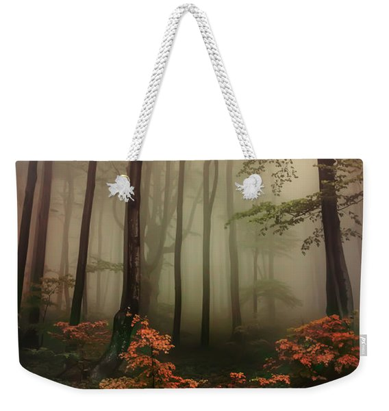 Weekender Tote Bag featuring the photograph Autumn Mornin In Forgotten Forest by Jaroslaw Blaminsky