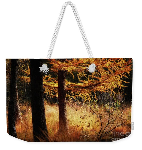 Autumn Scene In A Dark Forest, Pine Trees Gold Colored  Weekender Tote Bag