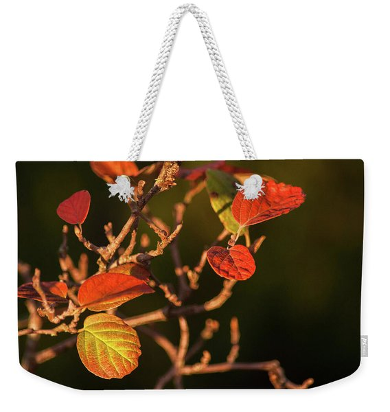 Autumn Shining Weekender Tote Bag