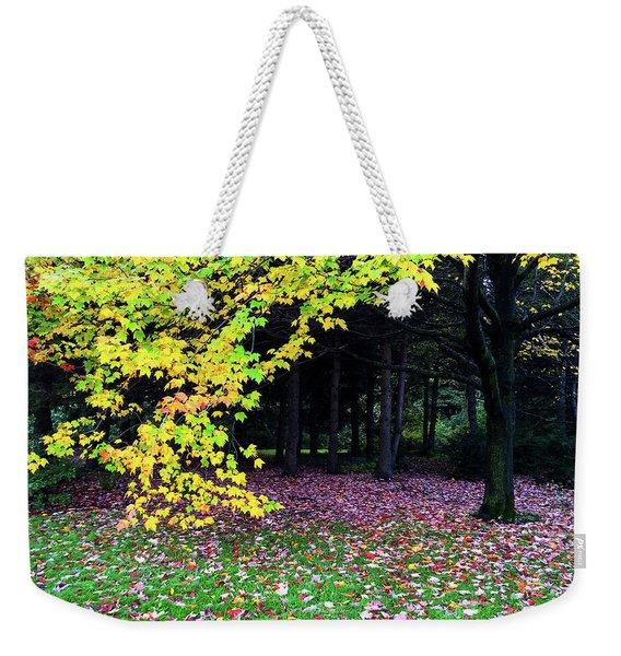 Autumn Trees And Fallen Leaves Weekender Tote Bag