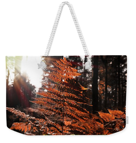Autumnal Evening Weekender Tote Bag