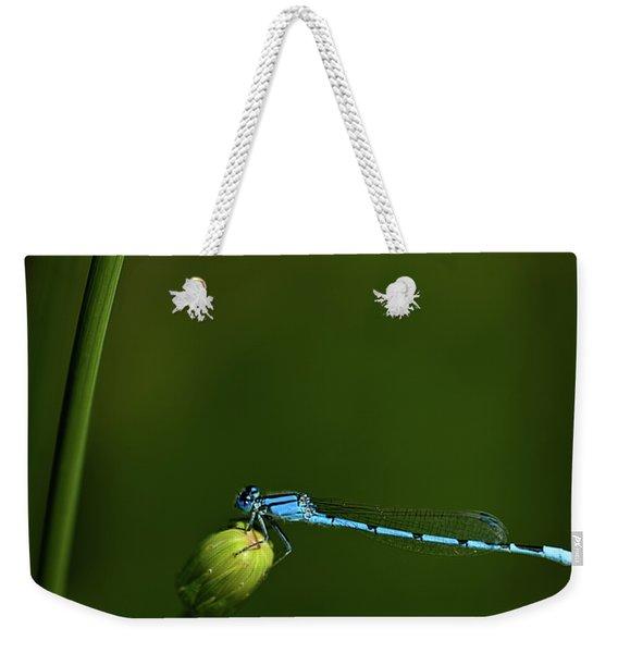 Azure Damselfly-coenagrion Puella Weekender Tote Bag
