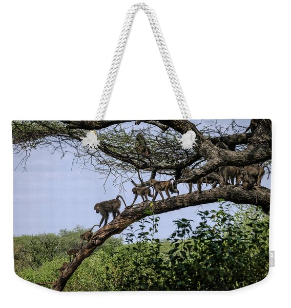 Baboons On A Limb Weekender Tote Bag