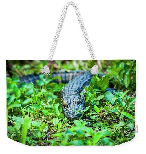 Baby Alligator Weekender Tote Bag