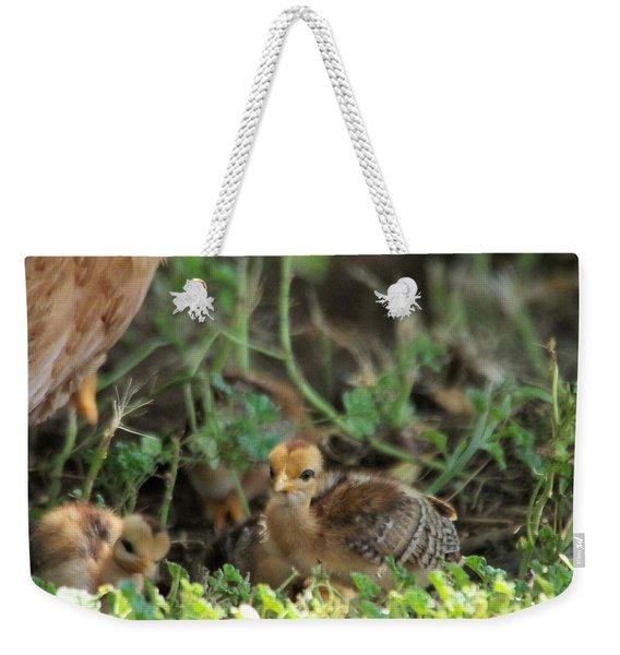 Baby Chick Weekender Tote Bag
