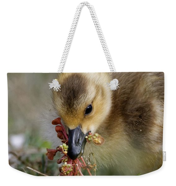 Baby Chick With Water Flowers Weekender Tote Bag