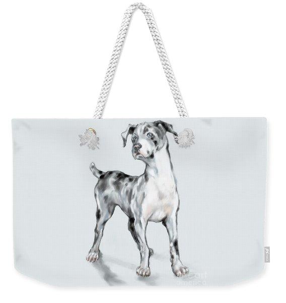Weekender Tote Bag featuring the digital art Baby Dane by Lora Serra