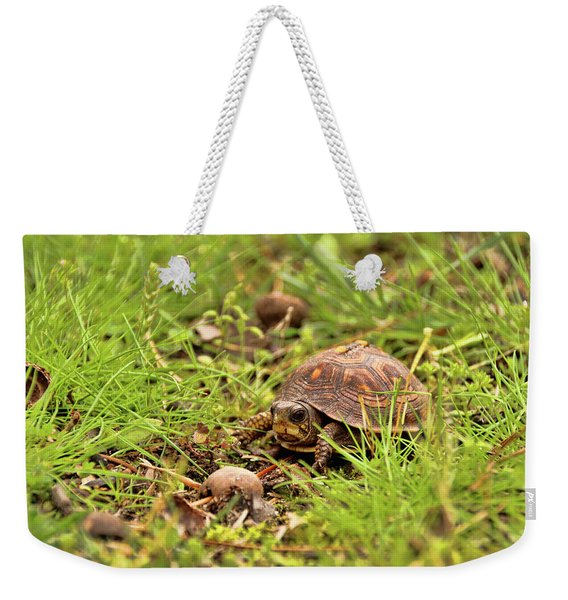 Baby Eastern Box Turtle Weekender Tote Bag