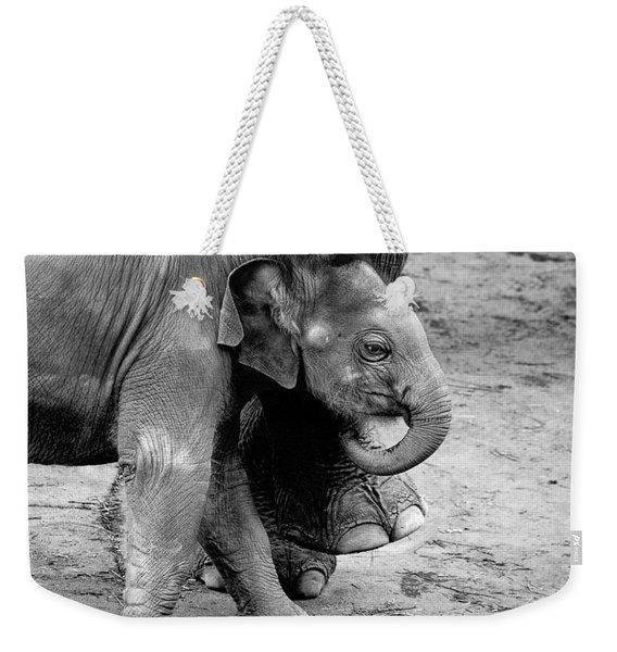 Baby Elephant Security Weekender Tote Bag