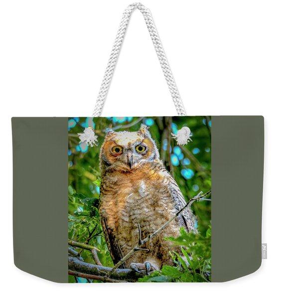 Baby Great Horned Owl Weekender Tote Bag