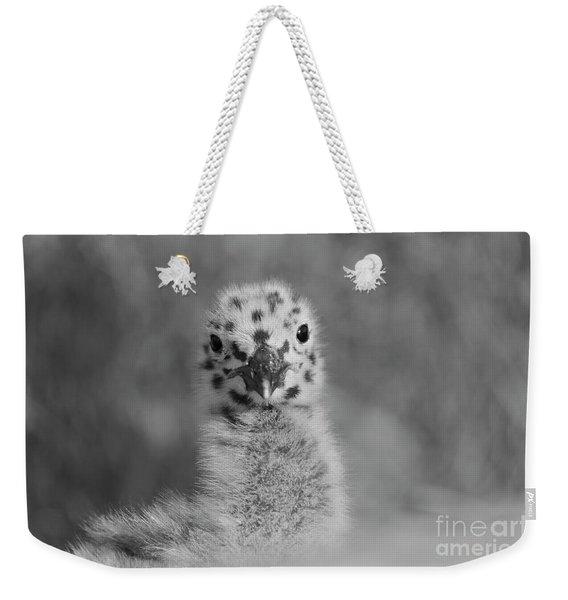 Baby Western Seagull Weekender Tote Bag