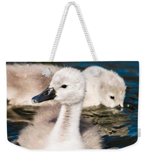 Baby Swan Close Up Weekender Tote Bag