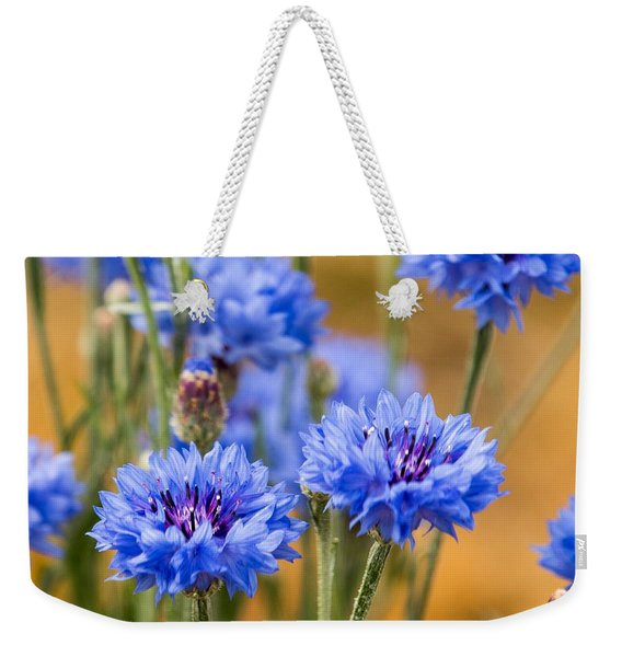 Bachelor Buttons In Blue Weekender Tote Bag