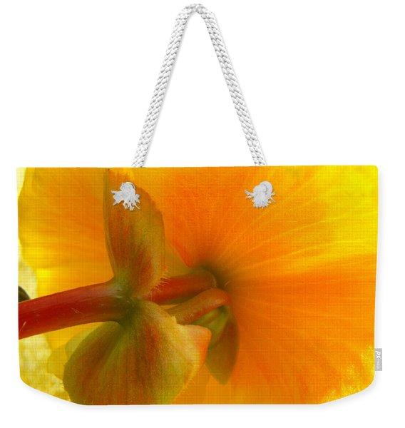 Back Side Weekender Tote Bag