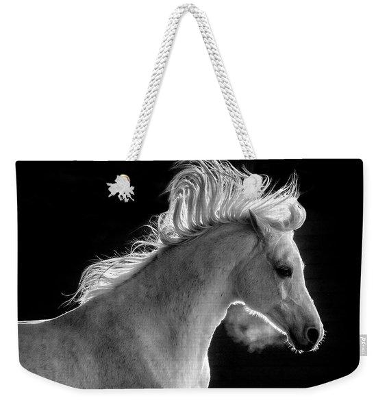 Backlit Arabian Weekender Tote Bag