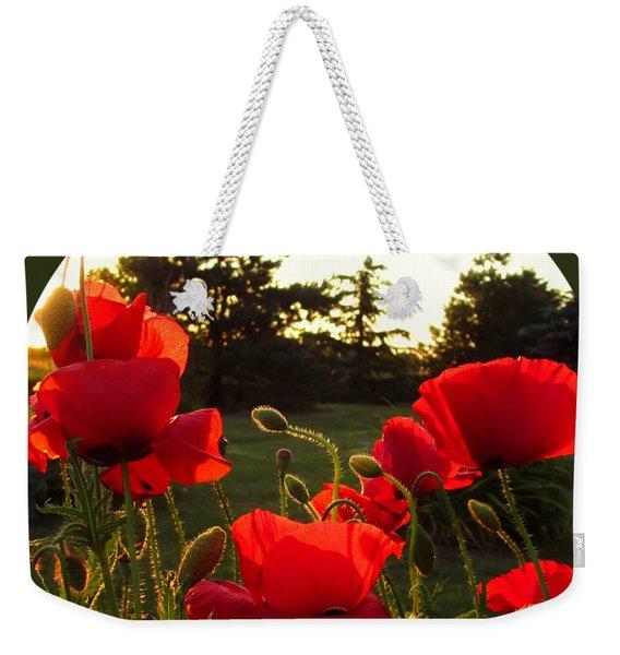 Backlit Red Poppies Weekender Tote Bag