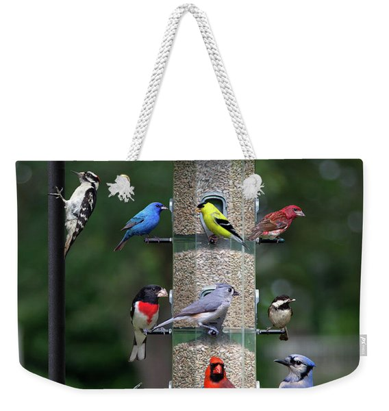 Backyard Bird Feeder Weekender Tote Bag