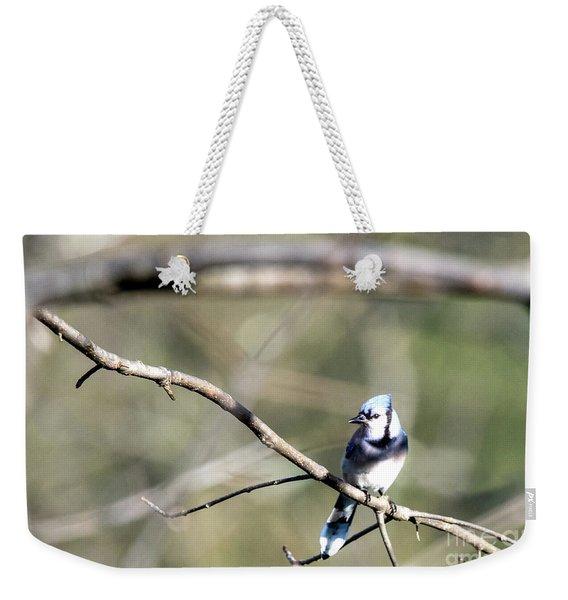 Backyard Blue Jay Weekender Tote Bag
