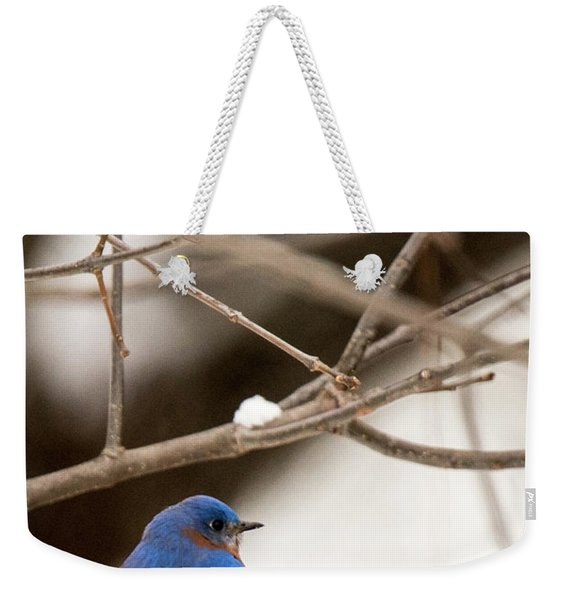Backyard Bluebird Weekender Tote Bag