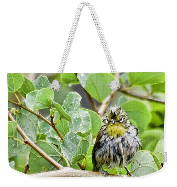 Bad Hair Day Weekender Tote Bag
