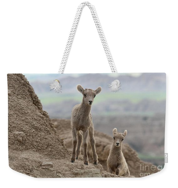 Badlands Curiosity Weekender Tote Bag