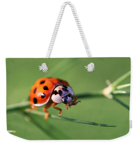 Weekender Tote Bag featuring the photograph Balancing Act by William Selander