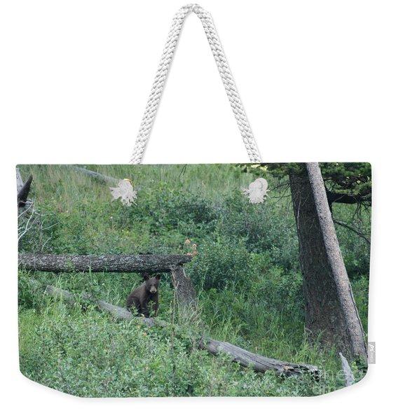 Balance Beam Weekender Tote Bag