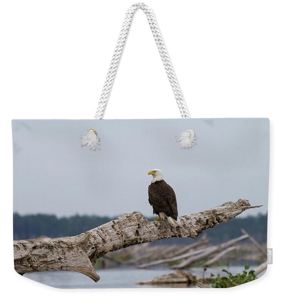 Bald Eagle #1 Weekender Tote Bag