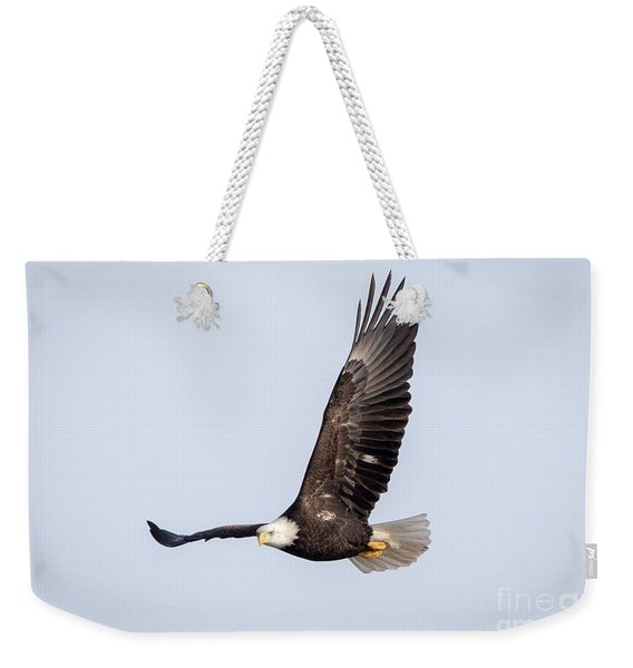 Bald Eagle Flying Over Horicon Marsh Weekender Tote Bag