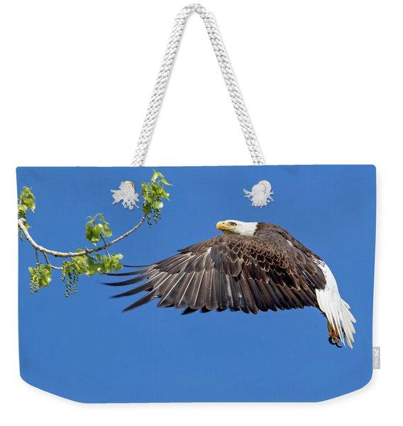 Bald Eagle In Flight 4-25-17 Weekender Tote Bag