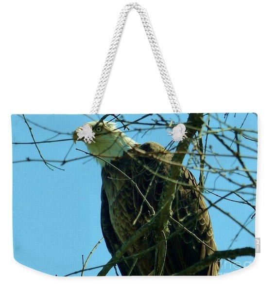 Bald Eagle Keeping Guard Weekender Tote Bag